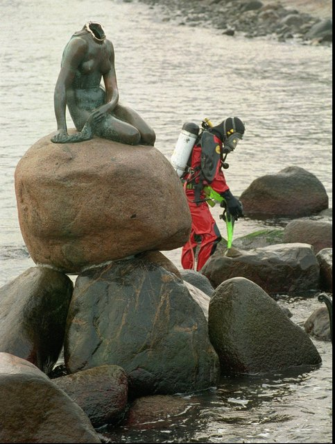 A diver prepares to search for the missing head of The Little Mermaid in Copenhagen's harbour Tuesday, January 6, 1998. Copenhagen's number one tourist attraction was decapitated during the night by unknown offenders. (Photo by Mogens Flindt/AP Photo)