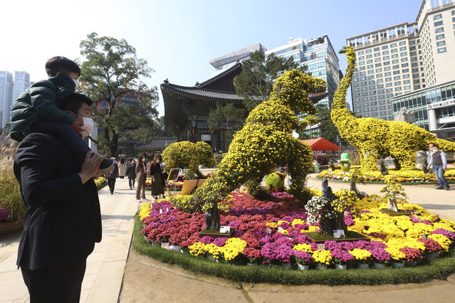 A boy and his father wearing face masks to help curb the spread of the coronavirus watch dinosaurs made of chrysanthemum flowers during the Chrysanthemum festival at the Chogyesa temple in Seoul, South Korea, Monday, October 19, 2020. (Photo by Ahn Young-joon/AP Photo)