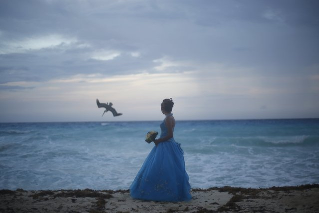 A girl looks at a bird fishing in the sea in Cancun, October 14, 2015. (Photo by Edgard Garrido/Reuters)