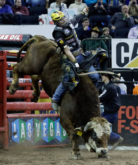 Slivano Alves, from Brazil, rides RMEF Big Bull during the Professional Bull Riders Buck Off, in New York's Madison Square Garden, Saturday, January 17, 2015. (Photo by Richard Drew/AP Photo)