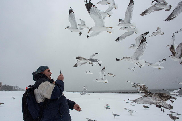 Performer Vincent Anthony Parrelli takes photos of seagulls as they fly in the snow during a winter storm at Brighton Beach, New York, U.S., February 1, 2021. (Photo by Ahmed Gaber/Reuters)