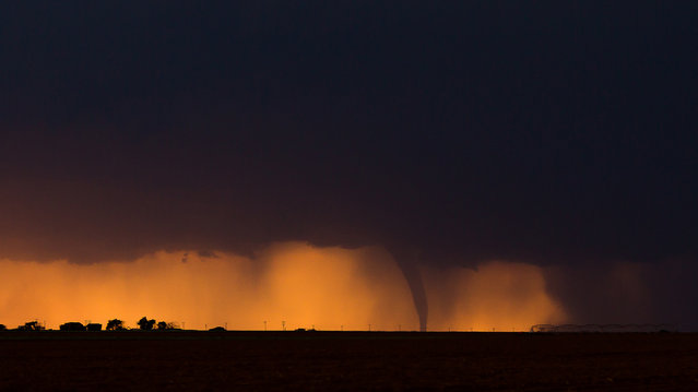 A tornado touches down near Dora, New Mexico on May 29, 2015 in New Mexico, United States. (Photo by Mike Olbinski/Barcroft Media)