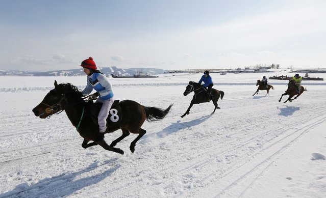 Riders compete on the frozen Yenisei River during the 45th Ice Derby amateur horse race near the settlement of Novosyolovo, south of the Siberian city of Krasnoyarsk March 14, 2015. The Ice Derby has been held in Novosyolovo annually at the end of each winter since 1969, drawing participants from the entire region. (Photo by Ilya Naymushin/Reuters)