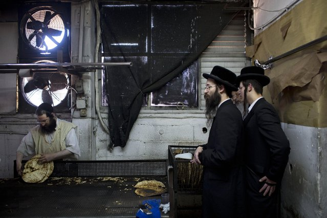 Ultra-Orthodox Jews prepare special matzoh, a traditional handmade Passover unleavened bread, at a bakery in Bnei Brak near Tel Aviv, Israel, Tuesday, March 31, 2015. (Photo by Oded Balilty/AP Photo)