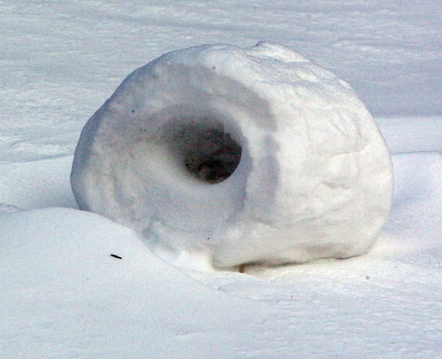 In this January 27, 2014 photo, snow rollers dot a lot at the northwest corner of Olive and North Main streets in Akron, Ohio. The snow balls are formed naturally when high winds push snow across a hill. (Photo by Michael Chritton/AP Photo/Akron Beacon Journal)