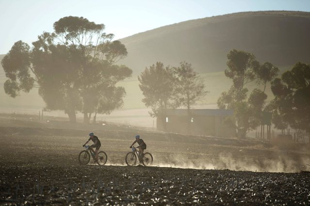 Cyclists ride through wheat fields during the prologue stage of the 2017 Cape Epic mountain bike stage race, near Durbanville, on March 19, 2017, in Grabouw, about 40Km from the centre of Cape Town. This stage is a time trials for the cyclists. The Epic, in which two riders race as a team, is widely known as the foremost mountain bike stage race in the world, with the riders covering a distance of 690Km, and climbing over 15400m in height, over eight days of racing. (Photo by Rodger Bosch/AFP Photo)