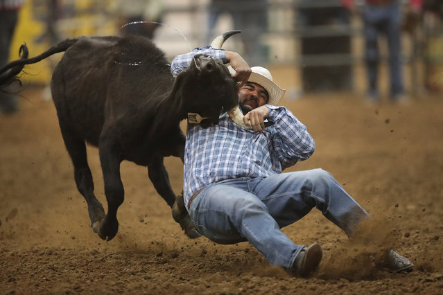 Dale Hubbard participates in the bull doggin competition at the Bill Pickett Invitational Rodeo on April 1, 2017 in Memphis, Tennessee. (Photo by Scott Olson/Getty Images)