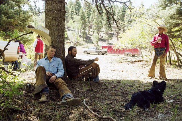 Cowboys Stetson Mackey (L), Wyatt Williams, and David Thompson (R) rest in the shade of a pine tree after lunch near Ignacio, Colorado June 11, 2014. (Photo by Lucas Jackson/Reuters)
