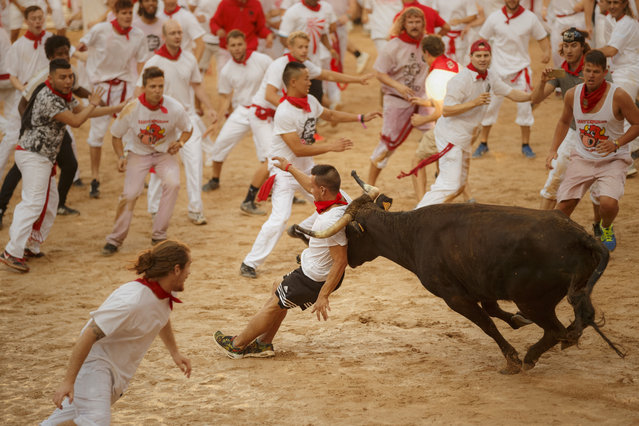 A reveler is charged by a cow in the bullring during a daily amusement event after the running of the bulls of 2016 San Fermin fiestas in Pamplona, Spain, Thursday, July 7, 2016. Revelers from around the world arrive to Pamplona every year to take part in some of the eight days of the running of the bulls. (Photo by Daniel Ochoa de Olza/AP Photo)