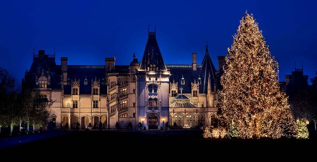 A 40-year-old tree from Tennessee stands lit on the front lawn of The Biltmore Estate in Ashville, N.C. (Photo by Sandra Stambaugh/The Biltmore Company)