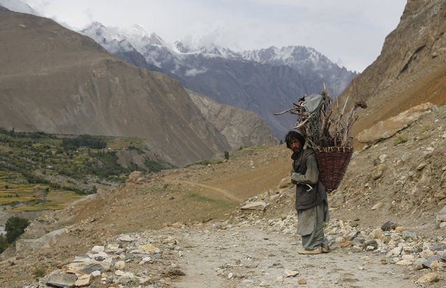 A man from the village of Askole carries firewood in the Karakoram mountain range in Pakistan August 28, 2014. (Photo by Wolfgang Rattay/Reuters)