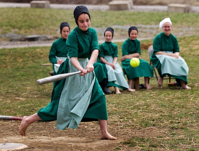 Amish girls play softball after class during an end of the school year celebration on Tuesday, April 9, 2013 in Bergholz, Ohio. The celebration was also part of a farewell picnic for four women and one man from this tight-knit group in rural eastern Ohio who will enter prison on Friday, April 12, joining nine already behind bars on hate crimes convictions for hair- and beard-cutting attacks against fellow Amish. (Photo by Scott R. Galvin/AP Photo)