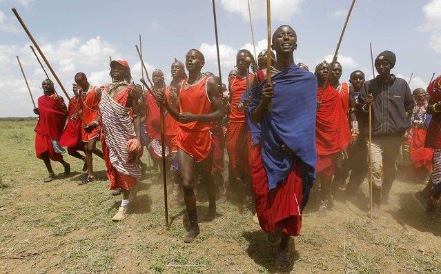 Maasai moran athletes sing and dance during the Maasai Olympics 2014 at the Sidai Oleng wildlife sanctuary at the base of Mt. Kilimanjaro near the Kenya-Tanzania border in Kajiado December 13, 2014. (Photo by Thomas Mukoya/Reuters)