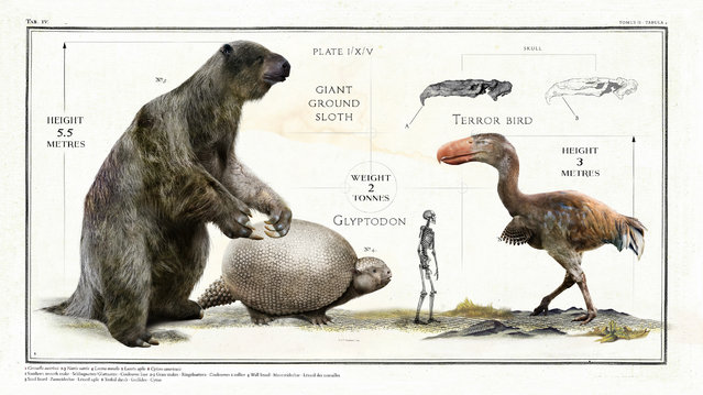 The ice age giant ground sloth (Megatherium) stood a colossal 5.5m high. Meanwhile the Glyptodon is a prehistoric relative of the modern armadillo – albeit one the size of a VW Beetle. While the terror bird from the Cenozoic era was a truly terrifying 3m high. (Photo by Sky TV/The Guardian)