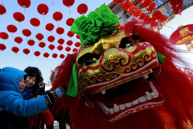 A boy touches a lion dancer while performing at the opening of Ditan Temple Fair on the Lunar New Year's Eve in Beijing, China Wednesday, February 18, 2015. (Photo by Andy Wong/AP Photo)