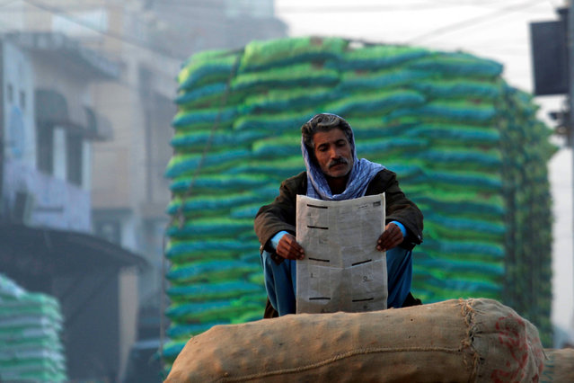 A man reads an evening newspaper while sitting on the sacks of onions at a vegetable market in Islamabad, Pakistan November 30, 2016. (Photo by Faisal Mahmood/Reuters)