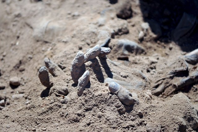 A hand is seen as Iraqi forensic teams recovered dead bodies from a mass grave in the presidential compound of the former Iraqi president Saddam Hussein in Tikrit April 6, 2015. Iraqi forensic teams began on Monday excavating 12 suspected mass grave sites thought to hold the corpses of as many as 1,700 soldiers massacred last summer by Islamic State militants as they swept across northern Iraq. (Photo by Reuters/Stringer)