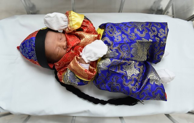 A newborn baby in a Chinese-inspired costume to mark the Year of the Rooster lays in a cot at Paolo Memorial Hospital in Bangkok on January 27, 2017. (Photo by Lillian Suwanrumpha/AFP Photo)
