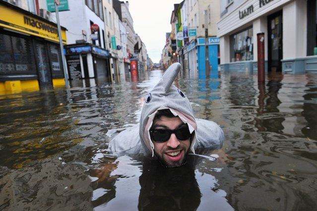Early morning shark Sean McKeon pictured during severe flooding Oliver Plunkett street, Cork city, on February 3, 2014. (Photo by Daragh McSweeney/Provision)