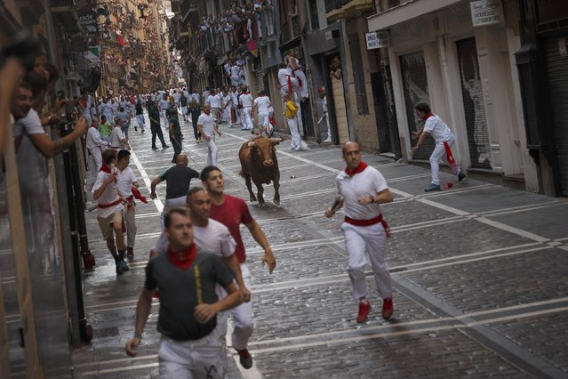 A Cebada Gago's ranch fighting bull chase revelers during the running of the bulls in Pamplona, Spain, Friday, July 8, 2016. A hospital official says five people were gored by fighting bulls in a hair-raising second running of the bulls at Pamplona's San Fermin festival. Several of the six bulls used in the run Friday got separated from the pack and began charging whatever came in sight, creating many moments of fear and tension. (Photo by Daniel Ochoa de Olza/AP Photo/ANSA)