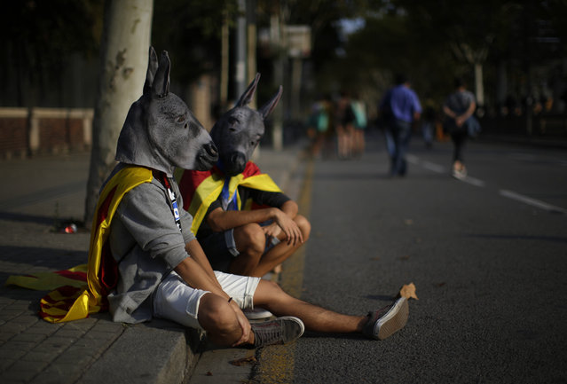 """Two man dressed in donkey masks and wrapped with an """"estelada"""" or pro independence flag rest during a protest in Barcelona, Spain, Thursday, September 21, 2017. Thousands have gathered at the gates of Catalonia's judiciary body in Barcelona to demand the release of a dozen officials arrested in connection with a vote on independence that Spanish central authorities are challenging as illegal. (Photo by Manu Fernandez/AP Photo)"""