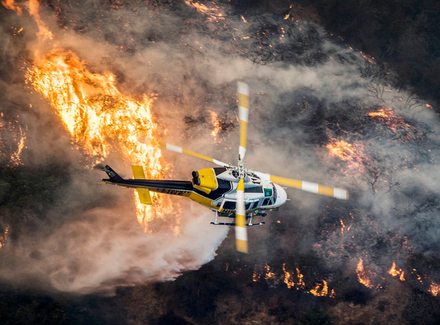 "A Los Angeles County Fire helicopter flies over during the ""Skirball Fire"" which began early morning in Bel-Air, California, USA, 06 December 2017. An outbreak of several fires North of Los Angeles has occurred as one of the strongest Santa Ana winds forecast of the season is ongoing and expected to last several days. (Photo by John Cetrino/EPA/EFE)"
