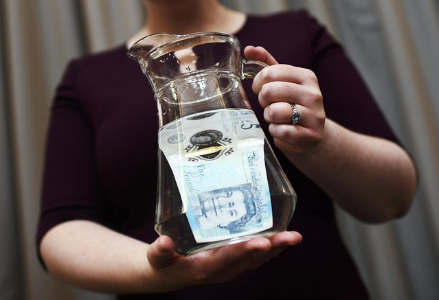 Bank of England Museum curator Jenni Adam, shows off the waterproof properties of the new polymer five pound note during an event at the Bank of England in central London, Britain September 6, 2016. The new note will be released next week. (Photo by Dylan Martinez/Reuters)