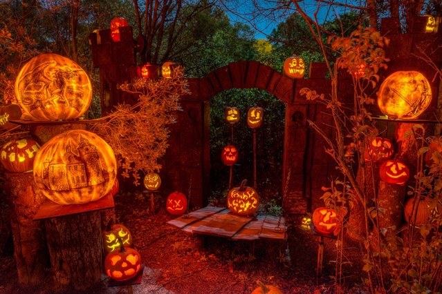 Nothing says Halloween like a jack-o'-lantern, but these professional carvings will blow your neighborhood pumpkin out of the water. (Photo by Frank C. Grace/Courtesy Jack-O-Lantern Spectacular)