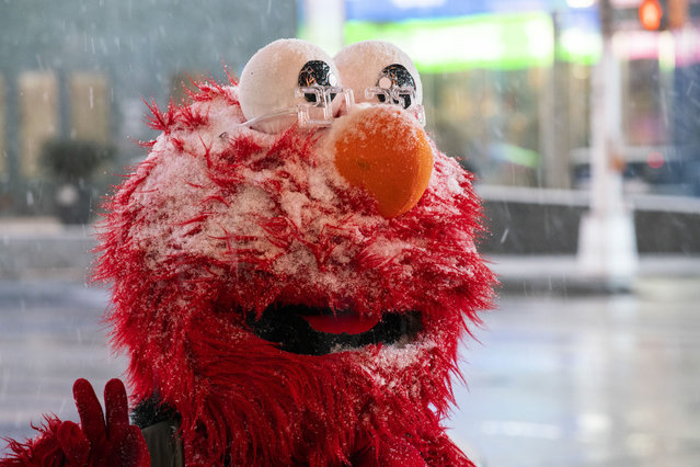A person wearing a mask of Elmo walks around Times Square during the pass of the snowstorm on January 31, 2021 in New York City. New York City Mayor Bill de Blasio declared a state of emergency order due to the arriving storm that's expected to wallop New York, where airports are expected to cancel the majority if their flights. (Photo by Eduardo Munoz Alvarez/VIEWpress)