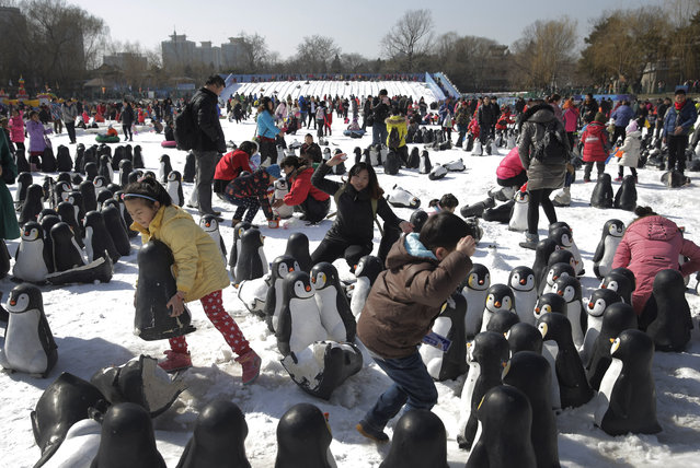 Chinese people play in the snow near penguin sculptures installed at Taoranting Park's temple fair for Lunar New Year celebrations in Beijing Monday, February 23, 2015. (Photo by Andy Wong/AP Photo)
