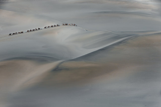 """""""A camel train taking tourists on a trip into the sand dunes of the Gobi desert"""". (Photo by Ian Webb/The Guardian)"""