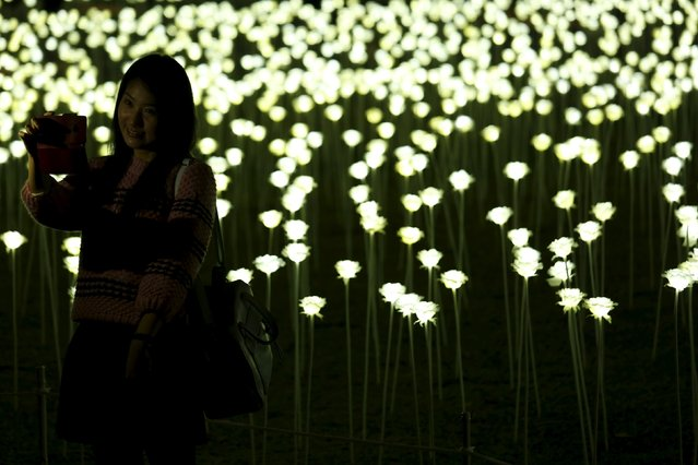 A visitor takes a selfie in front of illuminated white rose shaped LED lights, numbering a total of 25,000, seen at Admiralty in front of the financial Central district in Hong Kong, China February 13, 2016. (Photo by Bobby Yip/Reuters)