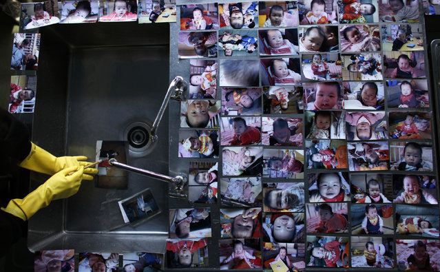 A volunteer cleans a family photo that was washed by the March 11 earthquake and tsunami as baby photos are placed to dry at a volunteer center in Ofunato, Iwate prefecture, April 12, 2011. (Photo by Toru Hanai/Reuters)