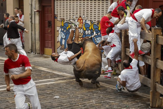 A reveler is gored by a Cebada Gago's ranch fighting bull during the running of the bulls in Pamplona, Spain, Friday, July 8, 2016. (Photo by Daniel Ochoa de Olza/AP Photo/ANSA)
