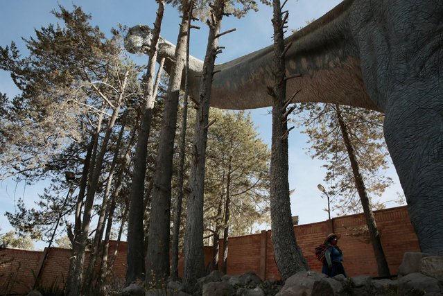 A visitor walks underneath a replica of a Titanosaur at the Cretaceous park in Cal Orcko, on the outskirts of Sucre, Bolivia, July 22, 2016. (Photo by David Mercado/Reuters)