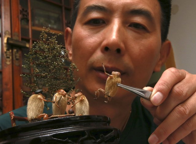 """Folk artist Yu Guangjun places """"Maohou"""" figures onto a miniature display at his house in Beijing, September 2, 2014. """"Maohou"""", which means hairy monkey in Chinese, is a traditional art form in Beijing that dates back to the Qing Dynasty and requires only the use of cicada sloughs and Magnolia buds to form miniature sculptures.  Yu has been using Maohou figures in his miniatures to depict scenes from Beijing during the 1960-70s period. (Photo by Kim Kyung-Hoon/Reuters)"""