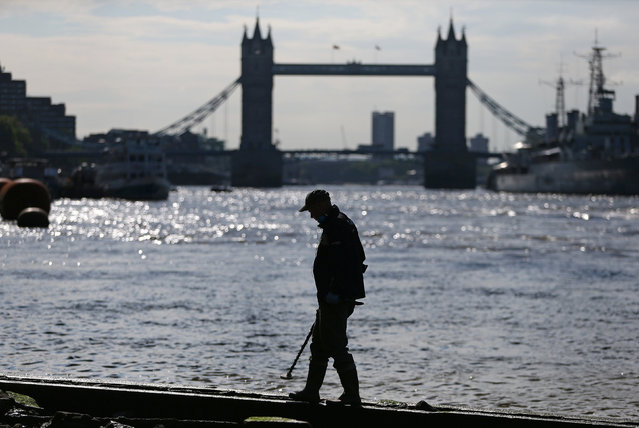 Mudlark Matthew Goode uses a metal detector to look for objects near Tower Bridge on the bank of the River Thames in London, Britain May 23, 2016. (Photo by Neil Hall/Reuters)