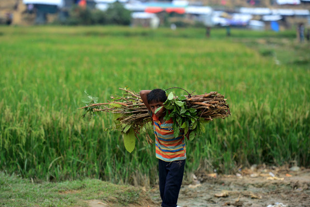 A Rohingya refugee child walks back to his house with a bundle of wood at Thankhali refugee camp in the Bangladeshi district of Ukhia on November 17, 2017. An estimated 618,000 Muslim Rohingya have fled mainly Buddhist Myanmar since a military crackdown was launched in Rakhine in August triggered an exodus, straining resources in the impoverished country. (Photo by Munir Uz Zaman/AFP Photo)