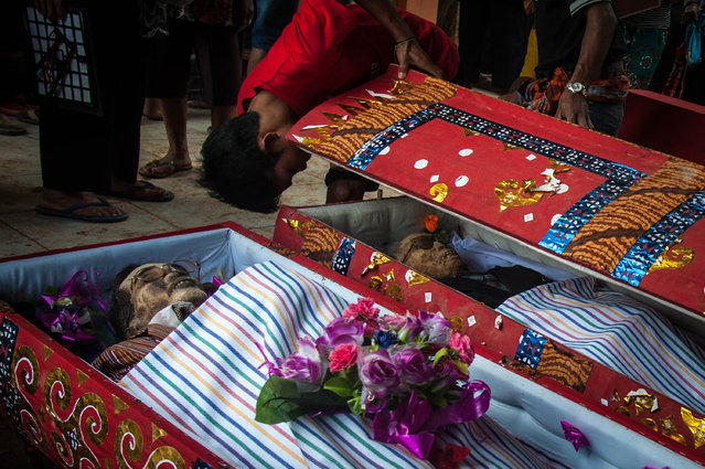Relatives inspect the bodies of Paulus Sampe Lumba and Yakob Tandi Tondon during the Ma'nene ritual at Panggala Village on August 26, 2016 in Toraja, Indonesia. (Photo by Sijori Images/Barcroft Images)