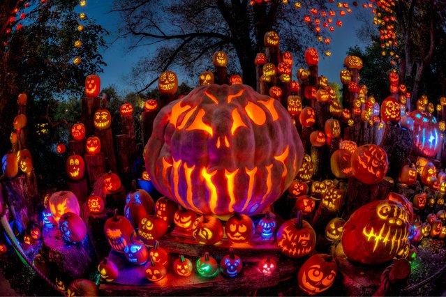 The jack-o'-lanterns change themes every 100 feet. (Photo by Frank C. Grace/Courtesy Jack-O-Lantern Spectacular)