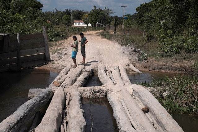 Villagers linger at the road leading out of Cigana Village in Araribóia Indigenous Reserve, Maranhão, Brazil on August 8, 2015. The chief of the village said there are no jobs. One way they make money is by allowing loggers to pass through - for a fee - despite efforts by the Guardians of the Forest to persude them otherwise. (Photo by Bonnie Jo Mount/The Washington Post)
