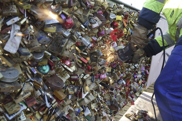 An employee of Paris city Hall removes padlocks clipped by lovers on the fence of the Pont des Arts over the River Seine in Paris, December 9, 2014. (Photo by Philippe Wojazer/Reuters)