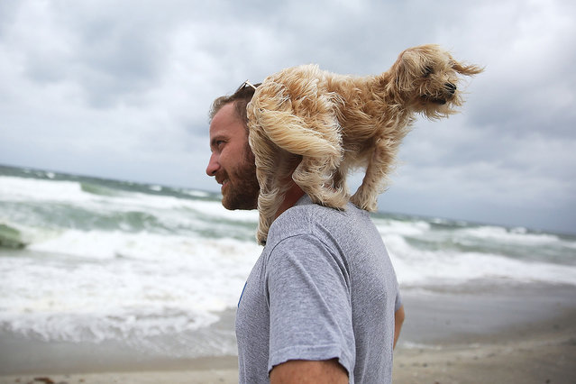 Ted Houston and his dog Kermit visit the beach as Hurricane Matthew approaches the area on October 6, 2016 in Palm Beach, United States.  The hurricane is expected to make landfall sometime this evening or early in the morning as a category 4 storm. (Photo by Joe Raedle/Getty Images)
