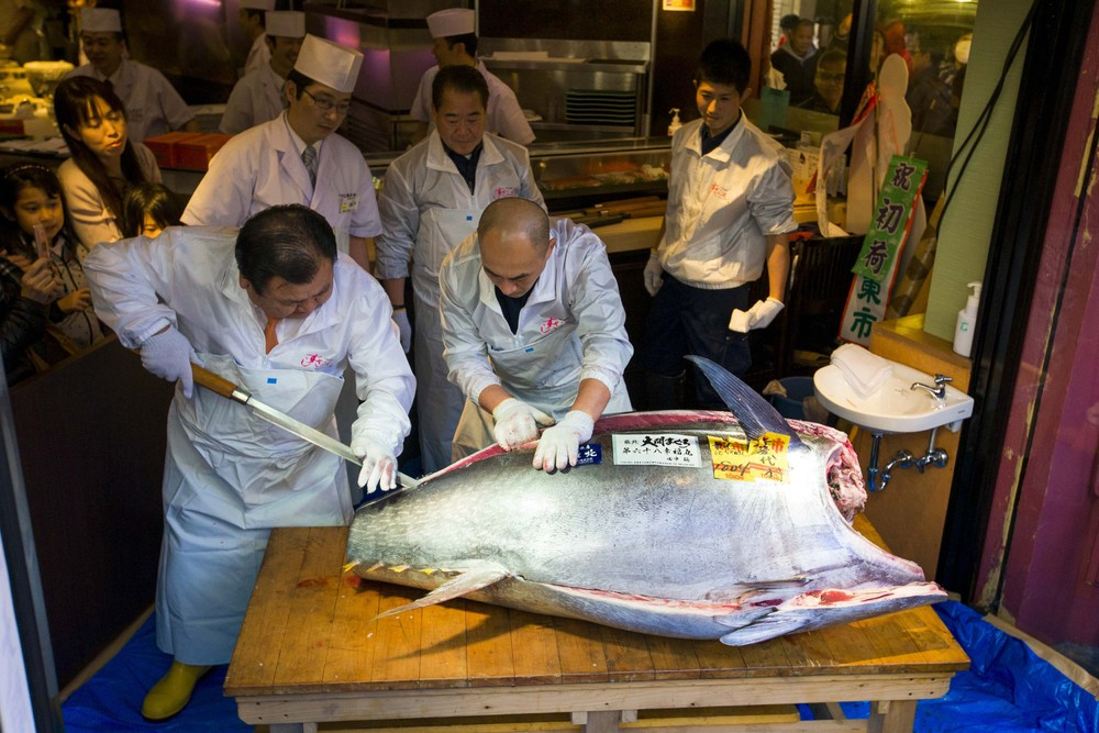Bluefin Tuna Goes for $37500 at Japanese Auction