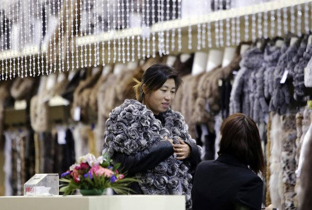 A woman tries on a fur cape at the 2015 China Fur and Leather Products Fair in Beijing, January 15, 2015. (Photo by Jason Lee/Reuters)