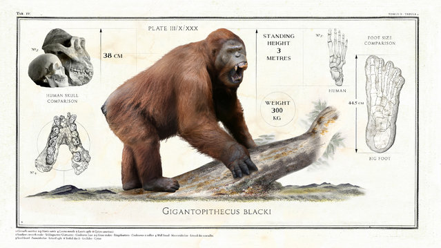The Gigantopithecus Blacki, a giant ape from nine million years ago, was 3m tall. (Photo by Sky TV/The Guardian)