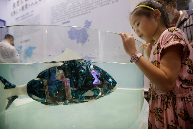 A girl looks at a robotic fish swimming in the water at the World Robot Conference in Beijing, China on August 15, 2018. (Photo by Jason Lee/Reuters)