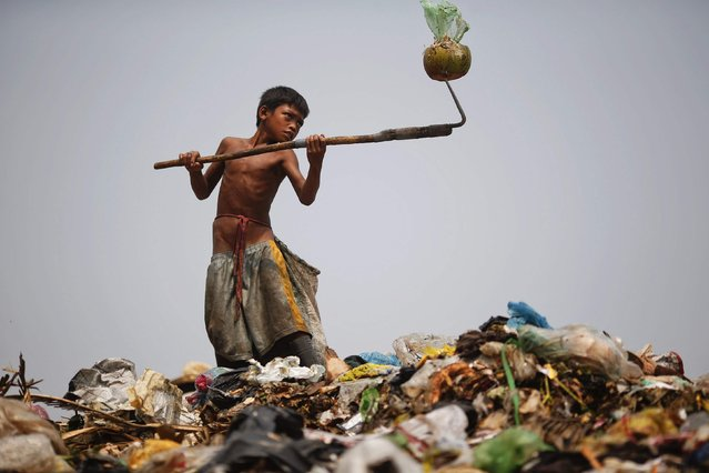 Seu, a 13-year-old boy who makes 25 US cents per day, removes a coconut with his spike while working at landfill dumpsite outside Siem Reap March 19, 2015. (Photo by Athit Perawongmetha/Reuters)