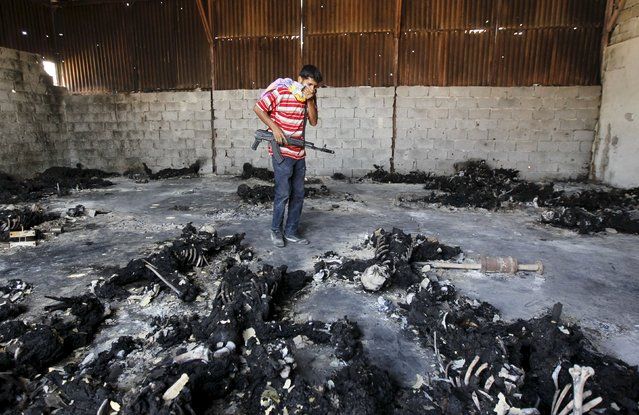 A rebel fighter looks at burnt bodies of people executed by Libyan leader Muammar Gaddafi, at the Khamis 32 military encampment in southern Tripoli August 28, 2011. (Photo by Louafi Larbi/Reuters)