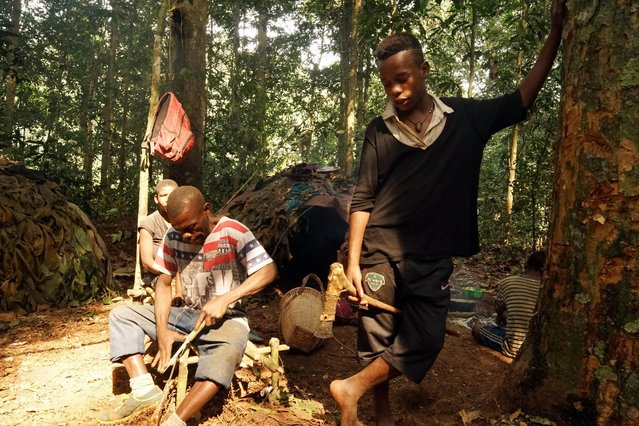 Poachers prepare their weapons in the Baka tribe's camp in, Sangha Forest, Central African Republic, February 2016. (Photo by Susan Schulman/Barcroft Images)